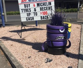 Have YOU spotted the TyrePlus Warrnambool Minions?